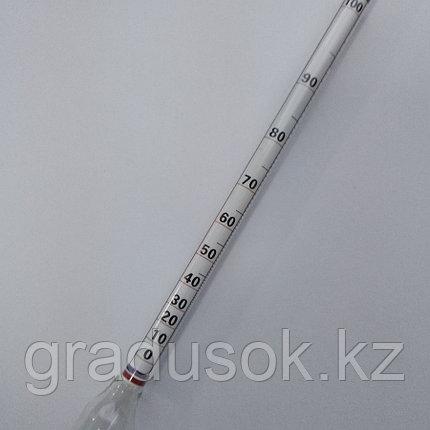 Ареометр-Спиртомер АСП-100, фото 2