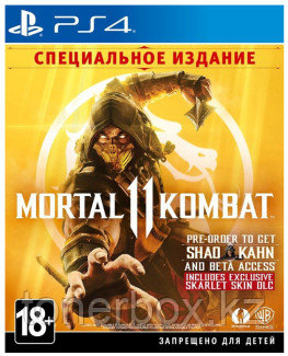 Игра для консоли PS4: Mortal Kombat 11