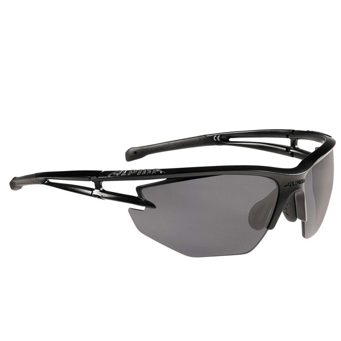 Alpina  очки Alpina Eye-5  HR CM+