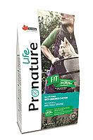 Pronature Life Fit (Пронатюр Лайф Фит) корм для котят и кошек с курицей 340 гр, фото 1