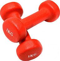 Гантели для фитнеса 1LB RED
