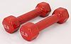 Гантели для фитнеса 2LB Red