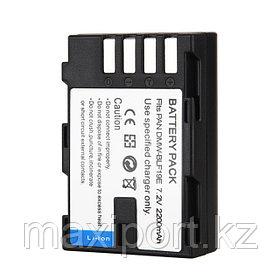 Panasonic BLF19 (digital)