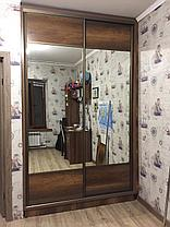 Шкафы-купе ЛДСП, фото 3