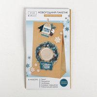 Пакет подарочный 'Новогодний подарочек', набор для создания, 15.5 x 28.5 см