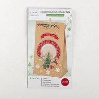 Пакет подарочный 'Новогодний переполох', набор для создания, 15.5 x 28.5 см