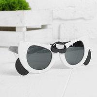 Очки солнцезащитные 'Панда'