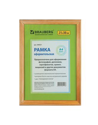 """Рамка деревянная для фотографий, дипломов, грамот """"Brauberg Hit"""", 21x30см, канадская сосна"""