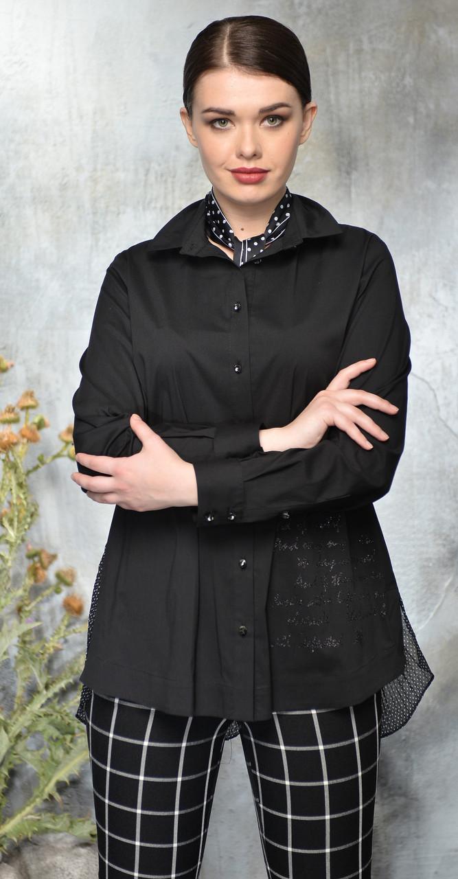 Блузка Anna Majewska-А217, черный, 50