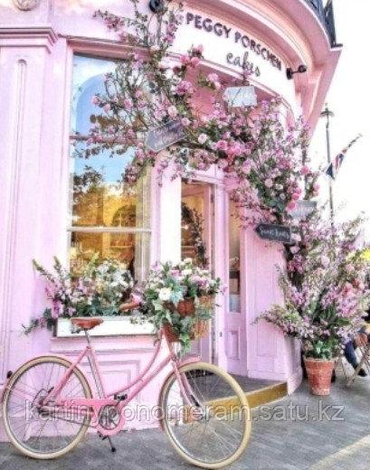 """Картина по номерам """"Розовый велосипед 2"""""""