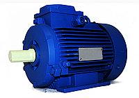 Электродвигатель АИР 100 L2 5.5кВт 3000об/мин
