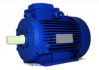 Электродвигатель АИР 160 М2 18.5кВт 3000об/мин