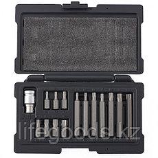 Набор бит TORX, хвостовик-шестигранник, 10 мм, CrV, 15 предметов Stels 11315, фото 3