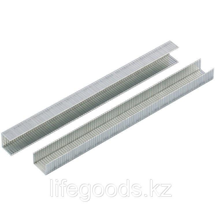 Скобы, 10 мм, для мебельного степлера, усиленные, тип 140,1250 шт Gross 41740
