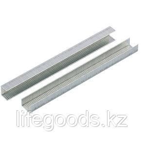 Скобы, 10 мм, для мебельного степлера, усиленные, тип 140,1250 шт Gross 41740, фото 2