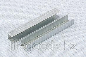 Скобы, 10 мм, для мебельного степлера, усиленные, тип 53, 1000 шт Gross 41710, фото 2