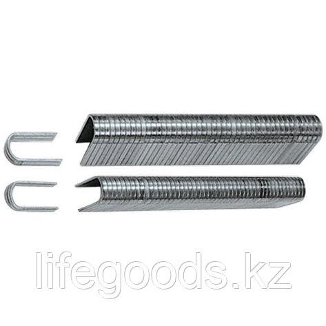 Скобы, 12 мм, для кабеля, закаленные, для степлера 40901, тип 36, 1000 шт Matrix Master 41412, фото 2