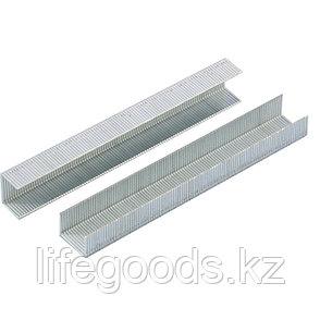 Скобы, 14 мм, для мебельного степлера, усиленные, тип 53, 1000 шт Gross 41714, фото 2