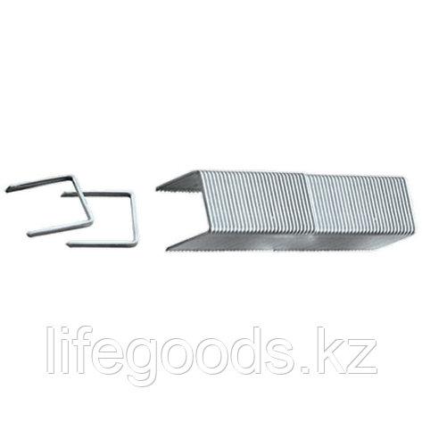 Скобы, 8 мм, для мебельного степлера, заостренные, тип 53, 1000 шт Matrix, фото 2