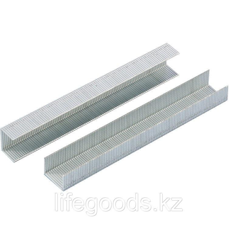 Скобы, 8 мм, для мебельного степлера, усиленные, тип 53, 1000 шт Gross 41708