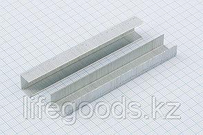 Скобы, 8 мм, для мебельного степлера, усиленные, тип 53, 1000 шт Gross 41708, фото 2