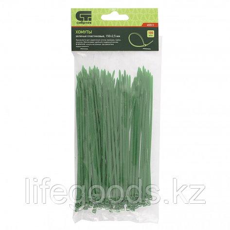 Хомуты, 150 x 2,5 мм, пластиковые, зеленые, 100 шт Сибртех 45511, фото 2