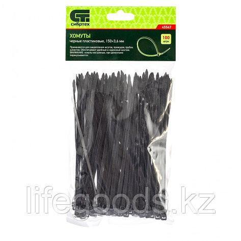 Хомуты, 150 х 3,6 мм, пластиковые, черные, 100 шт Сибртех 45547, фото 2