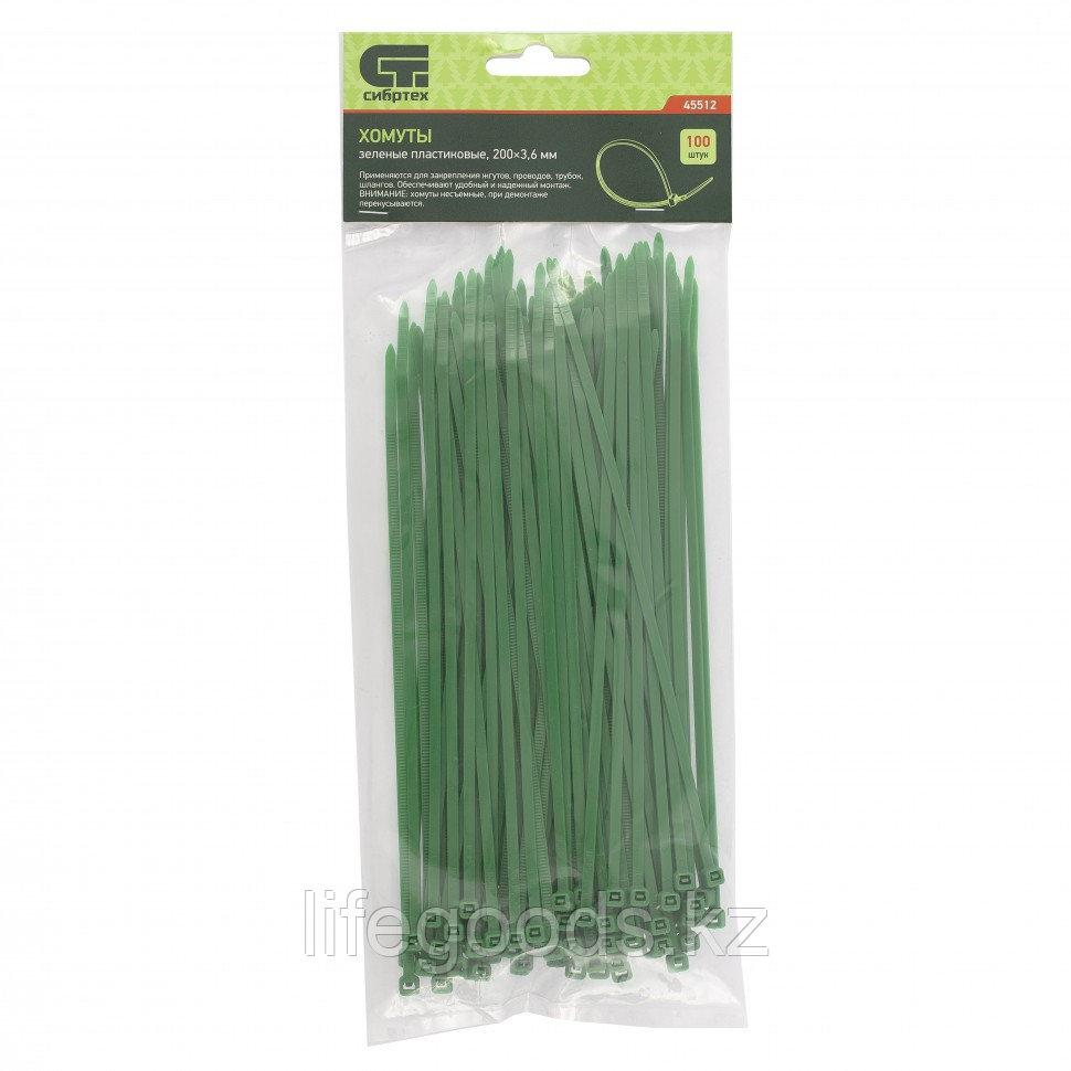Хомуты, 200 x 3,6 мм, пластиковые, зеленые, 100 шт Сибртех 45512