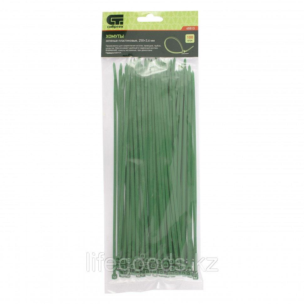 Хомуты, 250 x 3,6 мм, пластиковые, зеленые, 100 шт Сибртех 45513