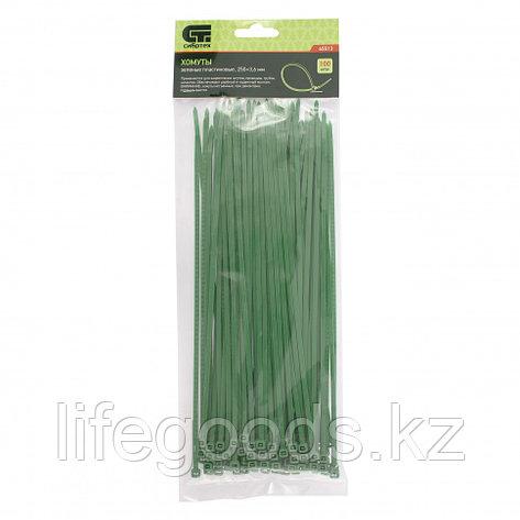 Хомуты, 250 x 3,6 мм, пластиковые, зеленые, 100 шт Сибртех 45513, фото 2
