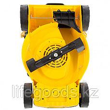 Газонокосилка электрическая GM-1600, 1600 Вт, Ширинa 36 см, 3 уровя, травосборник 35 л. Denzel 96616, фото 3