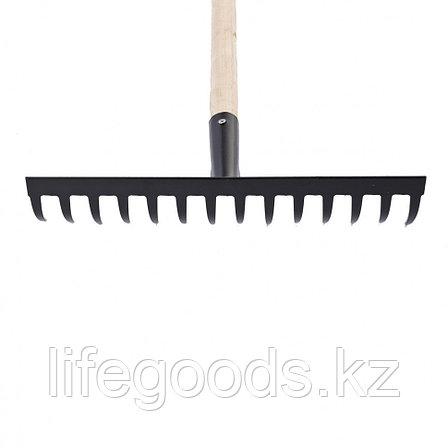 Грабли 14-зубые, 360 мм, с черенком, прямые Россия Сибртех 61742, фото 2