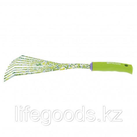 Грабли веерные, круглый зуб, пластиковая рукоятка Palisad 62042, фото 2