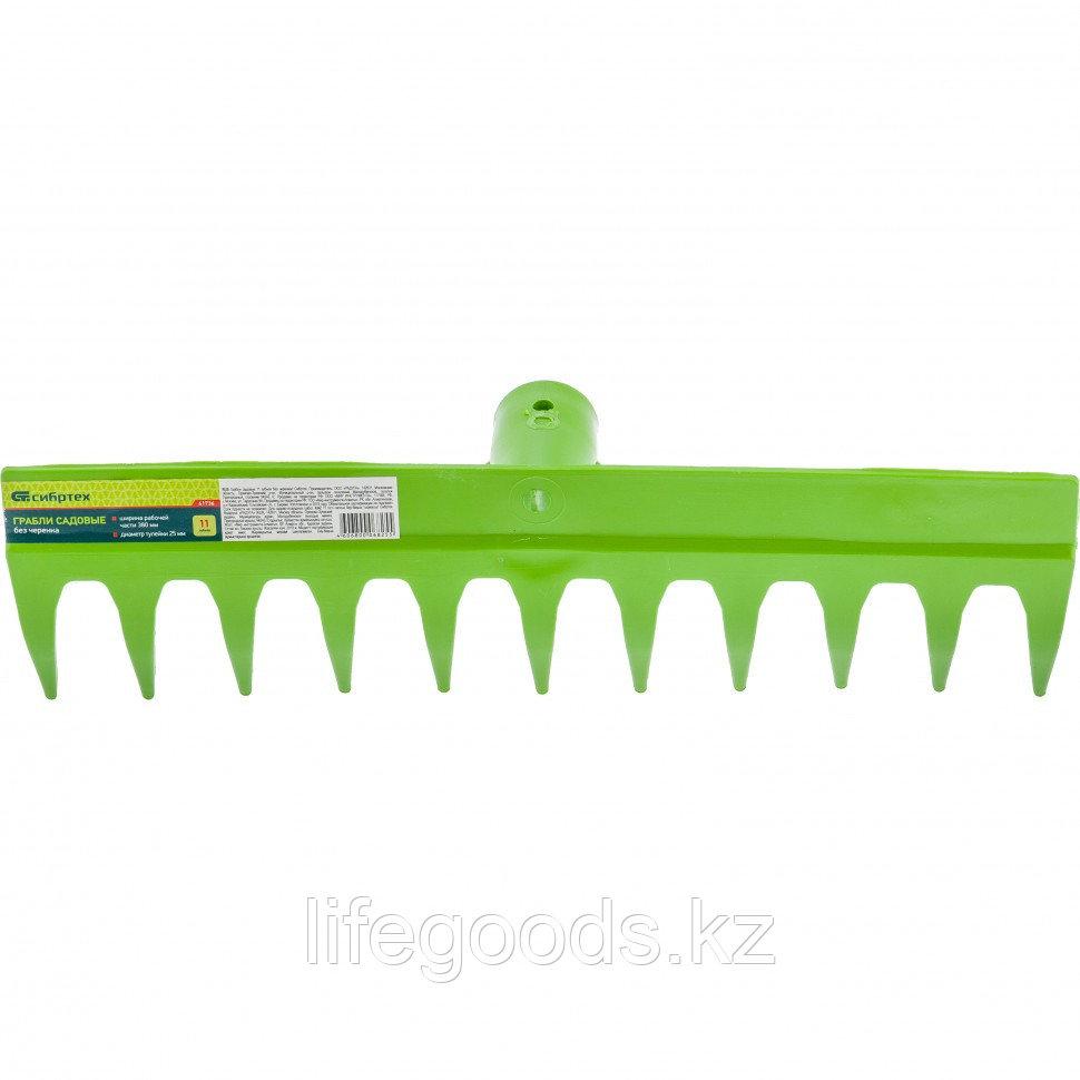 Грабли садовые 11 зубьев без черенка Сибртех 61736