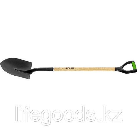 Лопата штыковая, эргономичный черенок из вяза, двухкомпонентная рукоятка, общая Длинa 1250 мм Palisad 61449, фото 2