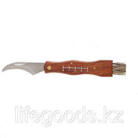 Нож грибника большой, деревянная рукоятка Palisad 79005, фото 2