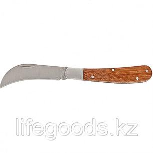 Нож садовый, 170 мм, складной, изогнутое лезвие, деревянная рукоятка Palisad 79001, фото 2