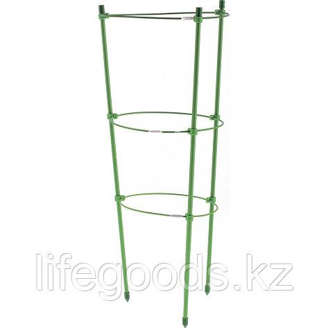 Поддержка для растений круглая H 120 см, металл в пластике, 4 кольца Palisad 644035, фото 2