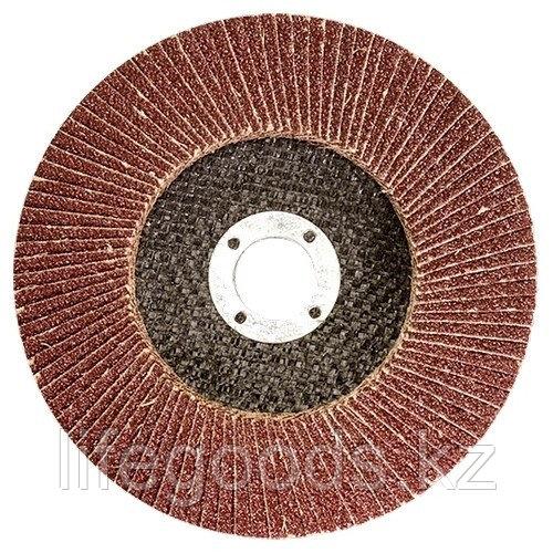 Круг лепестковый торцевой КЛТ-2, зернистость Р 80, 125 х 22,2 мм 740857