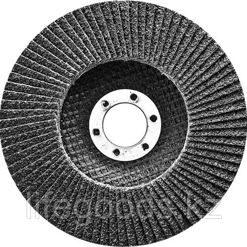 Круг лепестковый торцевой, конический, Р 24, 125 х 22,2 мм Сибртех 74082