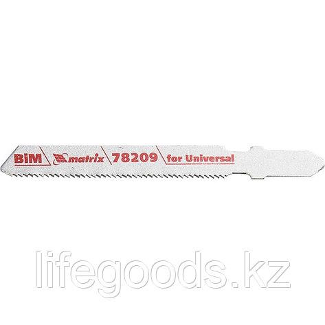 Полотна для электролобзика по металлу, 3 шт, T118AF, 55 х 1,2 мм, Bimetal Matrix Professional 78209, фото 2