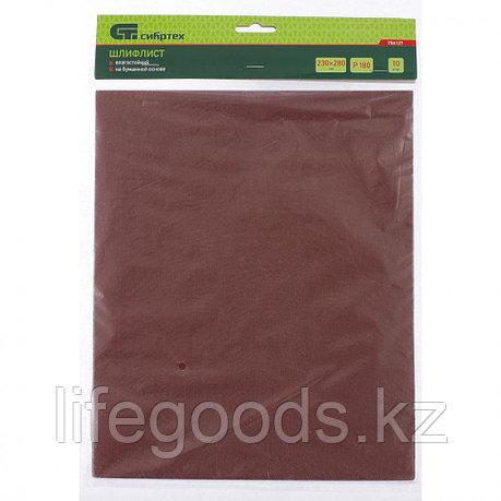 Шлифлист на бумажной основе, P 800, 230 х 280 мм, 10 шт, влагостойкий Сибртех, фото 2