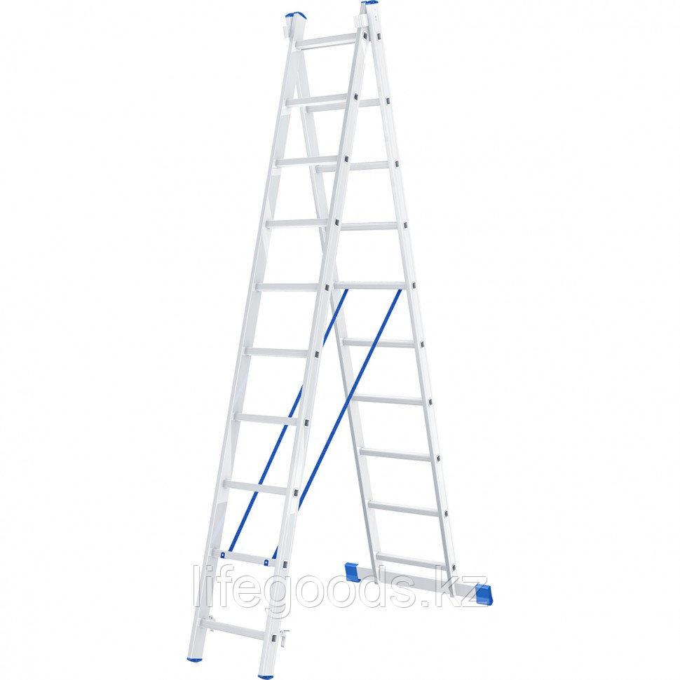 Лестница, 2 х 10 ступеней, алюминиевая, двухсекционная, Россия, Сибртех 97910