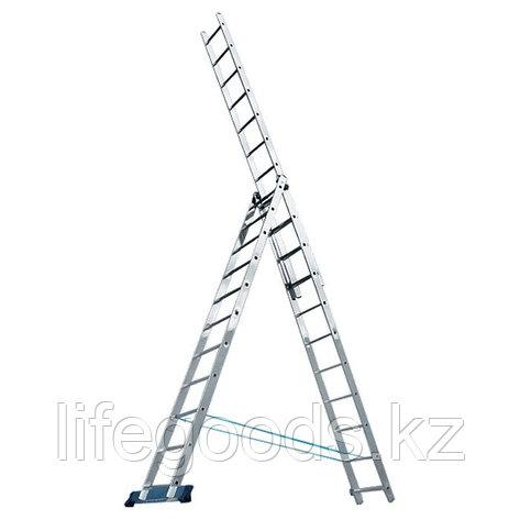 Лестница, 3 х 8 ступеней, алюминиевая, трехсекционная Pоссия 97781, фото 2