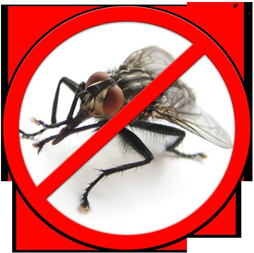 Обработки от мух