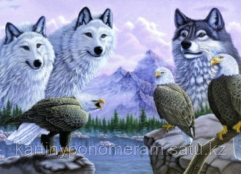 """Картина по номерам """"Орлы и волки"""""""