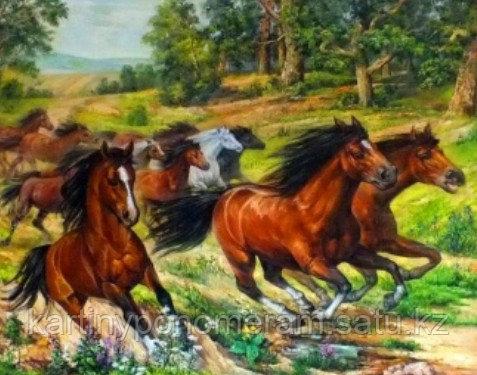 """Картина по номерам """"Вольные лошади"""""""