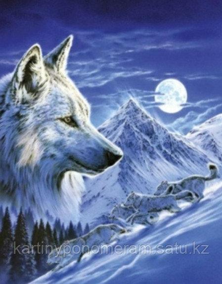 """Картины по номерам  """"Волки зимней ночью"""""""