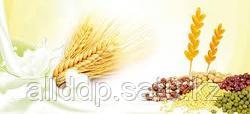 На экспорт зерновые, семечка подсолнуха FOB. CIF