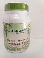 Пунарнава чурна, 100 гр, Сангам, Punarnava churnam, Sangam Herbals